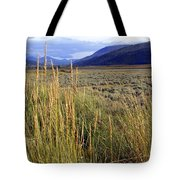 Lamar Valley 2 Tote Bag