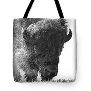 Lamar Valley Bison Black And White Tote Bag