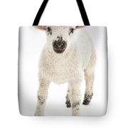 Lamb Standing Tote Bag