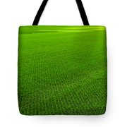 Lambeau Field Hallowed Ground Tote Bag