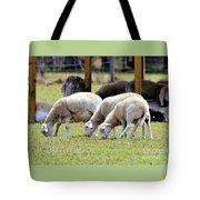 Lambswool Tote Bag