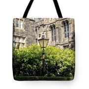 Lamppost In Front Of Green Bushes And Old Walls. Tote Bag
