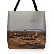 Land, Air, Sea Tote Bag