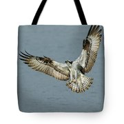 Osprey Approach Tote Bag