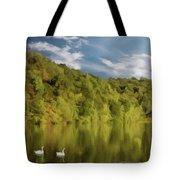 Landingville Lake Pennsylvania Tote Bag