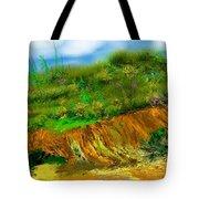 Landscape 012711 Tote Bag