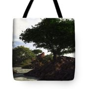 Landscape 082510 Tote Bag