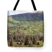 Landscape Alaska  Tote Bag