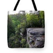 Landscape And Trees Tote Bag