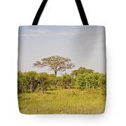 Landscape In Botswana Tote Bag