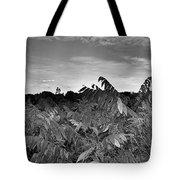 Landscape In Contrast Tote Bag