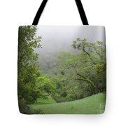 Landscape In Fog Tote Bag