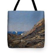 Landscape Marine Background Avendano Martinez, Serafin Tote Bag