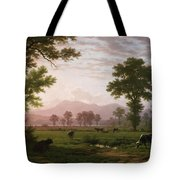 Landscape Near Lucerne With View To Mount Rigi Tote Bag