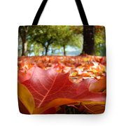 Landscape Trees Park Art Prints Autumn Fall Leaves Baslee Troutman Tote Bag