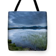Landscape With Water Grass Tote Bag