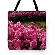 Lane Of Pink Tote Bag