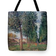 Lane Of Poplars At Moret Tote Bag