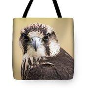 Lanner Falcon Tote Bag