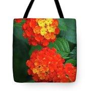 Lantana Bandana Red Flower Tote Bag