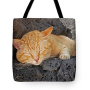 Lanzarote Ginger Tote Bag