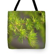 Larch Branch And Foliage Tote Bag