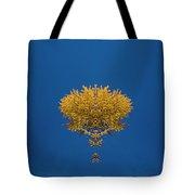 Larch Kaleidoscope 3 Tote Bag