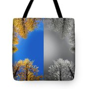 Larches Color To Black And White Reflection Tote Bag