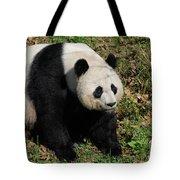 Large Black And White Giant Panda Bear Sitting Tote Bag