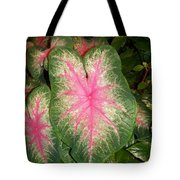 Large Coleus Plant Tote Bag