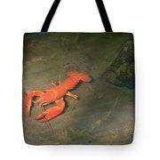 Large Crawdad Tote Bag