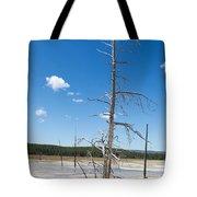 Large Dead Standing Tree In Hot Springs  Tote Bag