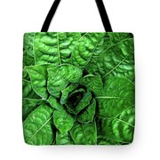 Large Green Display Of Concentric Leaves Tote Bag