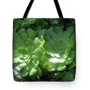 Large Green Succulent Plants Tote Bag