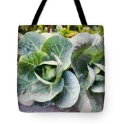 Large Leaves Of A Cabbage Plant Tote Bag