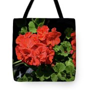 Large Red Begonia Bloom Tote Bag