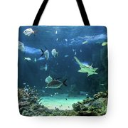 Large Sawfish And Other Fishes Swimming In A Large Aquarium Tote Bag