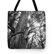 Large Tree Tote Bag