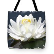 Large Water Lily With White Border Tote Bag