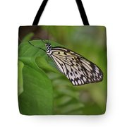 Large White Tree Nymph Butterfly On Green Foliage Tote Bag