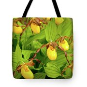 Large Yellow Lady's Slipper  Tote Bag
