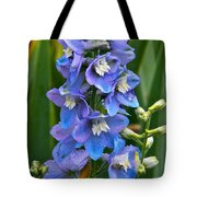Larkspur And Lady Friend Tote Bag