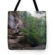 Lasalle Canyon Starved Rock State Park Tote Bag