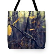 Last Bit Of Fall Tote Bag