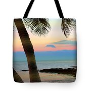 Last Evening Lights Tote Bag