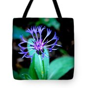 Last Flower In The Garden Tote Bag