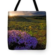 Last Light Of Spring Tote Bag