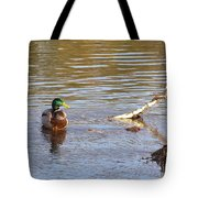 Last Mallard Of Autumn         October       Indiana    Tote Bag