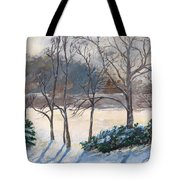 Last Night's Snow Tote Bag by Elizabeth Lane