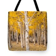 Last Of The Aspen Leaves Tote Bag